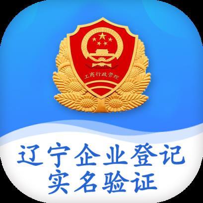 辽宁企业登记实名验证app