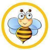 蜜蜂王国app下载安装