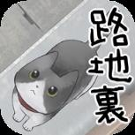 lost cat story完整版